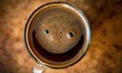 Солнечный кофе: повышение КПД фотоэлементов за счет кофеина