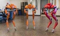 В самоуправляемых фургонах Ford появятся «ходячие роботы» Agility Robotics