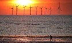 Впервые в истории США возобновляемые источники энергии выработали электричества больше угольных станций