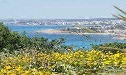 [Из песочницы] Работа и жизнь айтишника на Кипре — плюсы и минусы