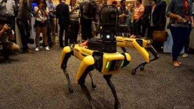 Фото Механические собаки Boston Dynamics станут участниками боев на роботах