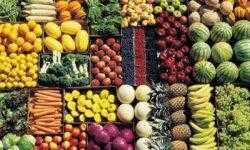 Мы выбрасываем 40% выращенной пищи — куда она девается?