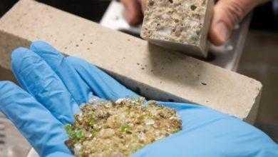 Фото Новый тип бетона снизит стоимость строительства домов