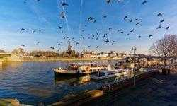 Осторожный переезд в Нидерланды с женой и ипотекой. Часть 2: подготовка документов и переезд