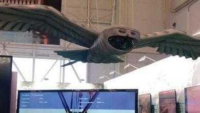 Фото В России разработали шпионский дрон в виде совы
