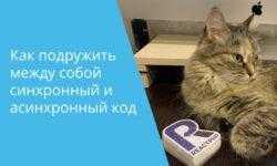 Анонс митапа, плавно переходящего в BeerPHP дринкап (в Москве и онлайне)
