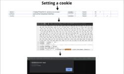 Эксплуатация cookie-based XSS | $2300 Bug Bountystory