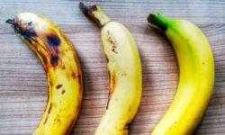 Почему бананы могут исчезнуть с лица Земли?