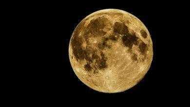 Фото Россия готова развивать лунную программу с партнёрами по МКС