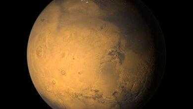 Фото Еще одна причина, почему мы не должны колонизировать Марс