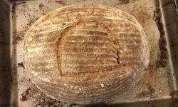 Как испечь хлеб, который ели египетские фараоны?