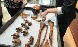 Ученые узнали кем был американец, которого 200 лет назад люди считали вампиром