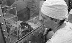 Зачем ученые из NASA кормили животных лунным грунтом