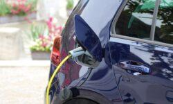 Электрокары в России смогут ездить по выделенной полосе