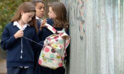 Как травля в школе влияет на мозг ребенка?