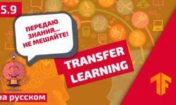 Погружение в свёрточные нейронные сети: передача обучения (transfer learning)