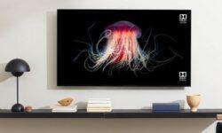 Смарт-телевизоры OnePlus TV получили аудиосистему мощностью 50 Вт