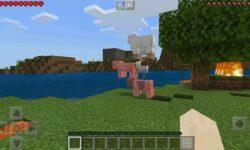 [Из песочницы] Попытки начать обучение ребенка программированию с Minecraft pocket edition