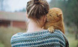 Кошки воспринимают хозяев как своих родителей