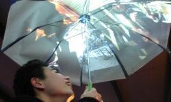 Осенняя подборка: а что вы думаете об умных зонтах?