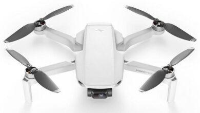 Фото Почти официально: DJI Mavic Mini предложит полчаса полёта и 2,7K-камеру за $500