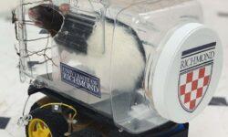 #видео | Мыши научились управлять маленькими автомобилями