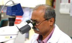 ИИ помогает быстрее диагностировать рак шейки матки