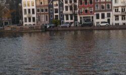 Как программисту переехать в Нидерланды