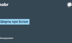 Шорты про Scrum