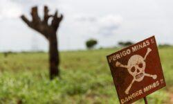 Военные США будут искать мины при помощи бактерий
