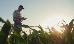 FCC создаст фонд в размере $9 млрд для развёртывания сетей 5G в сельскохозяйственных и труднодоступных регионах США