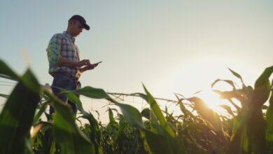 Фото FCC создаст фонд в размере $9 млрд для развёртывания сетей 5G в сельскохозяйственных и труднодоступных регионах США