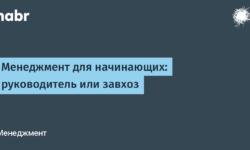 [Из песочницы] Менеджмент для начинающих: руководитель или завхоз