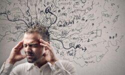 Может ли стресс продлевать жизнь