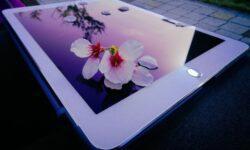 Рынок планшетов региона EMEA остаётся «в минусе», а лидерство досталось Apple
