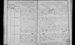 Генеалогические исследования — метрические книги, переписи, архивы, открытые базы