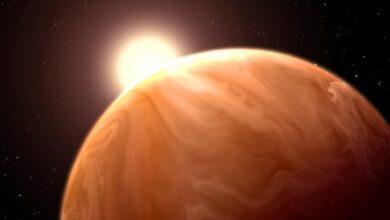Photo of [Перевод] Почему некоторые планеты едят свое небо