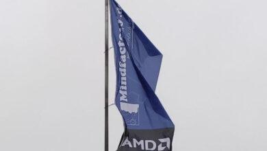 Фото И Radeon в поле воин: видеокарты AMD заняли 43 % продаж MindFactory