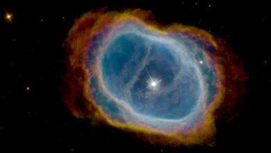 Фото Инопланетная жизнь может обитать рядом с белыми карликами