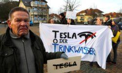 Немецкий суд запретил Tesla вырубку леса под строительство Гигафабрики