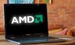 Новые версии процессоров AMD Dali замечены в коде Google Chrome OS