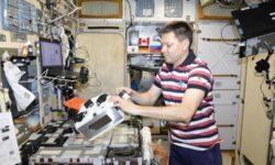 Российский космический 3D-биопринтер воссоздаст кости грызуна