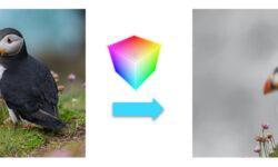 Трансформация цвета: поиски в прореженном столе