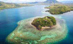Project: CORaiL: система на базе ИИ поможет в восстановлении коралловых рифов