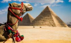 Великий египетский фаерволл