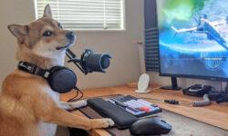 Бесплатные вебинары Skillbox: пишем игры на PHP, Unity и Unreal Engine