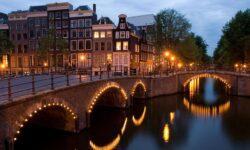 Истории о моей работе в Нидерландах