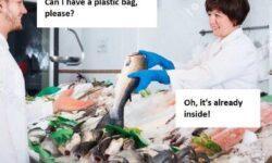 Небольшая история о биоразлагаемых пакетах в России