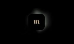 Новое приложение «Медузы». Почему Flutter?