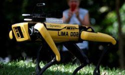 Робопёс Boston Dynamics напоминает жителям Сингапура о важности социального дистанцирования